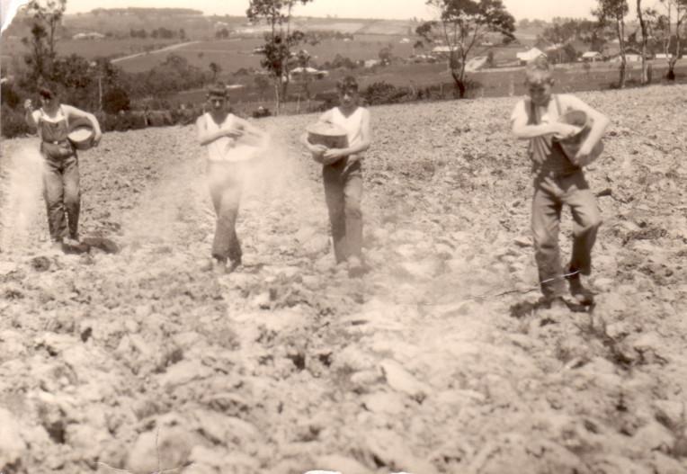 BHGS Students feeding crops at Gwynton Park - 1935